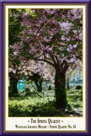 MOZART: Das Frühlingsquartett